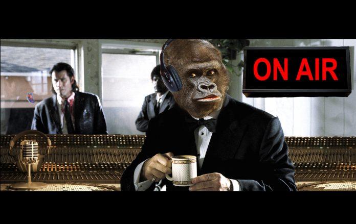 la scimmia parla