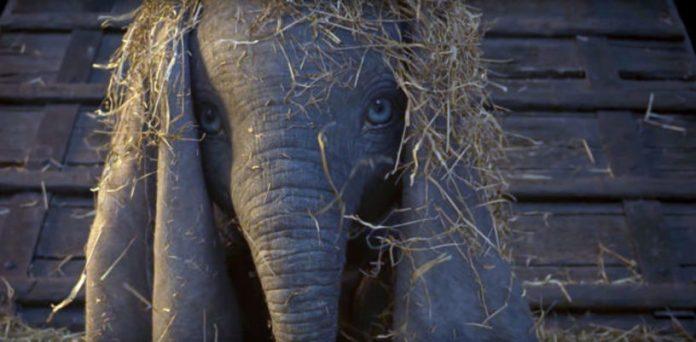 Dumbo, ecco il primo trailer!