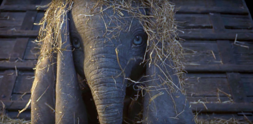 Dumbo torna al cinema quanto rendono a disney i revival in live