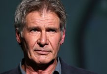 Harrison Ford, incidente, aereo