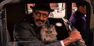 Wes Anderson odia davvero i gatti
