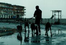 Dogman: gli Oscar respingono Garrone