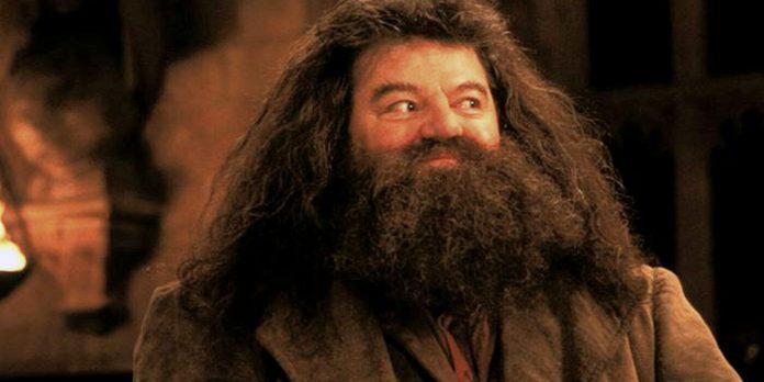 Robbie Coltrane nei panni di Hagrid in Harry Potter
