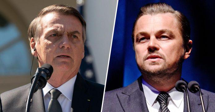 Leonardo DiCaprio bolsonaro risposta
