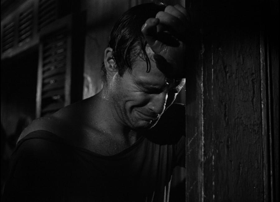 Un tram che si chiama desiderio, Marlon Brando