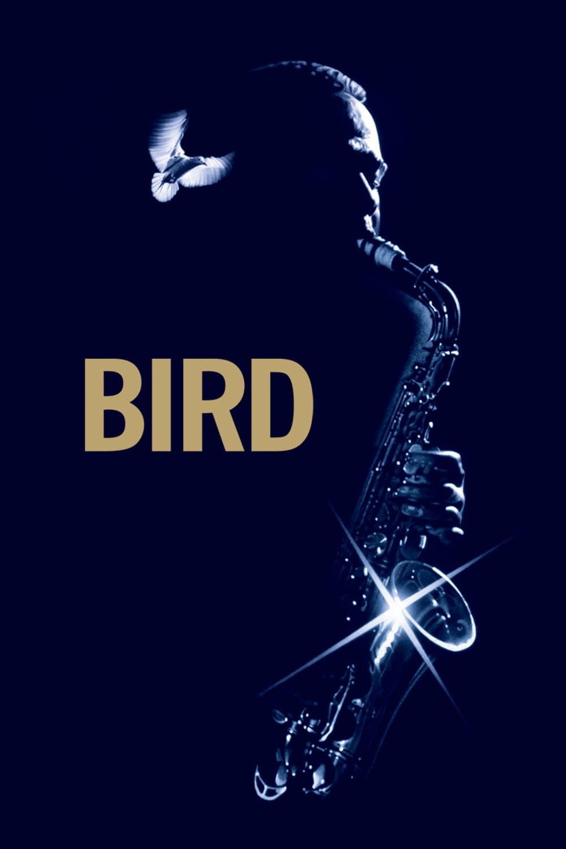 "Poster del Film ""Bird"""