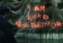 Voldermort, Harry Potter