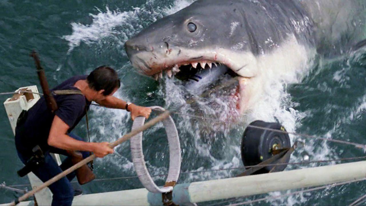 Lo squalo, Steven Spielberg