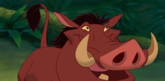 il re leone, pumbaa, ernesto brancucci