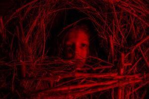 A Classic Horror Story recensione, recensione